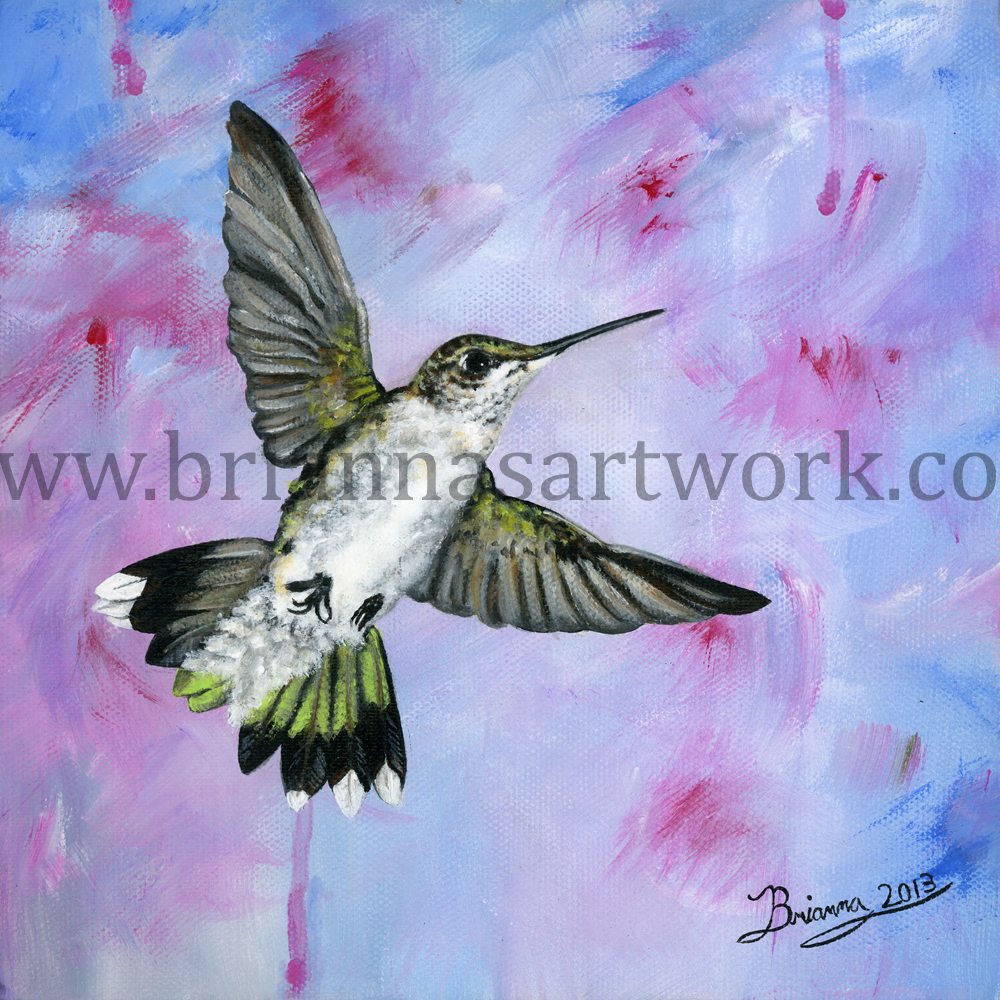 A-Hummingbirds-Pink-Dream