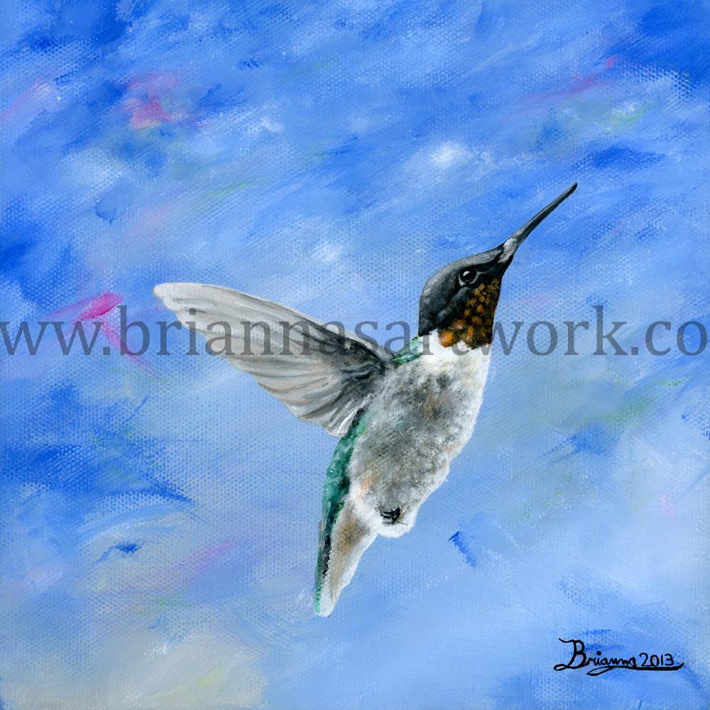 Hummingbird-Blues-low